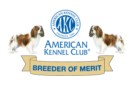 Breeder of Merit Castlekeep Cavalier King Charles Spaniel Breeders Glendale Arizona